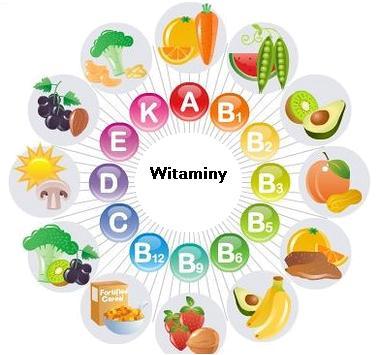 witaminy-w-owocach1