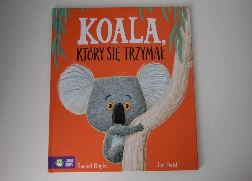 Koala który się trzymał